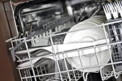 Dishwasher Technician Kearny